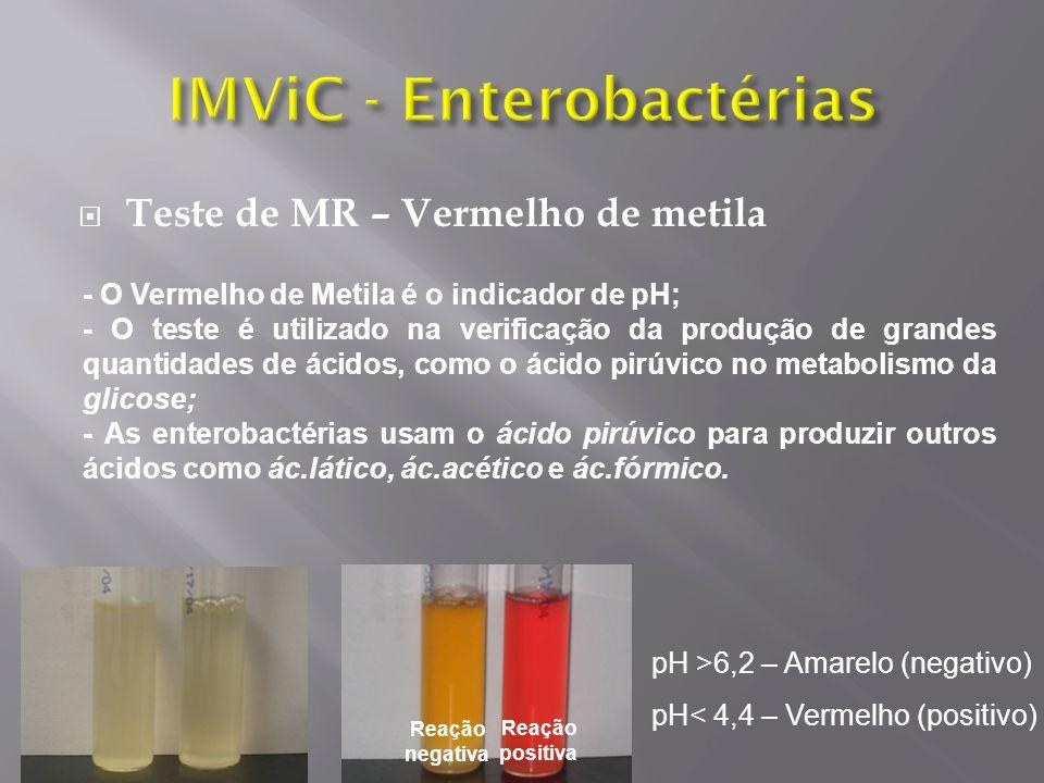 Teste de MR – Vermelho de metila Reação negativa Reação positiva pH >6,2 – Amarelo (negativo) pH< 4,4 – Vermelho (positivo) - O Vermelho de Metila é o indicador de pH; - O teste é utilizado na verificação da produção de grandes quantidades de ácidos, como o ácido pirúvico no metabolismo da glicose; - As enterobactérias usam o ácido pirúvico para produzir outros ácidos como ác.lático, ác.acético e ác.fórmico.