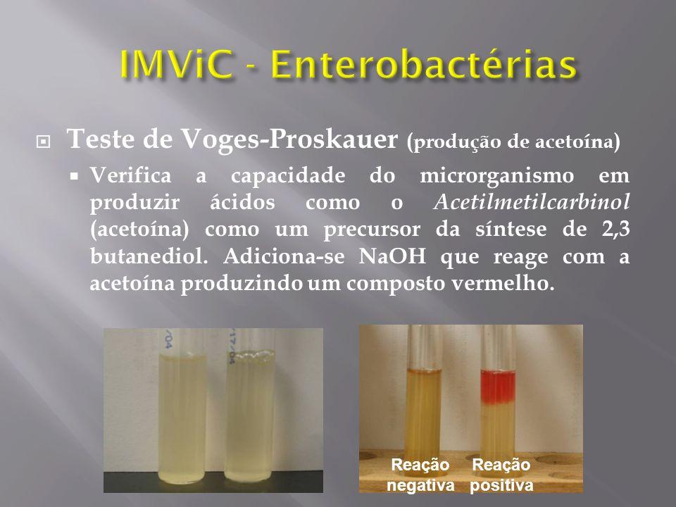 Teste de Voges-Proskauer (produção de acetoína) Verifica a capacidade do microrganismo em produzir ácidos como o Acetilmetilcarbinol (acetoína) como um precursor da síntese de 2,3 butanediol.