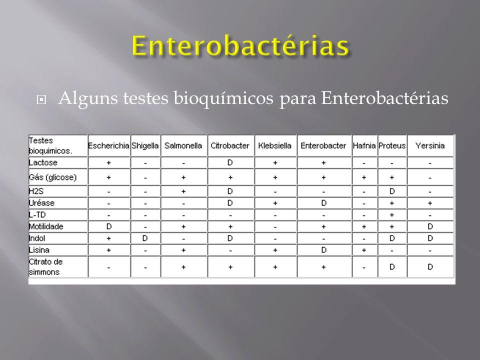 Alguns testes bioquímicos para Enterobactérias