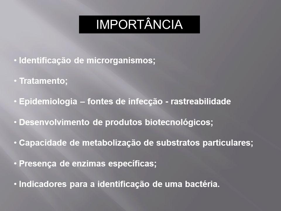 Identificação de microrganismos; Tratamento; Epidemiologia – fontes de infecção - rastreabilidade Desenvolvimento de produtos biotecnológicos; Capacidade de metabolização de substratos particulares; Presença de enzimas específicas; Indicadores para a identificação de uma bactéria.