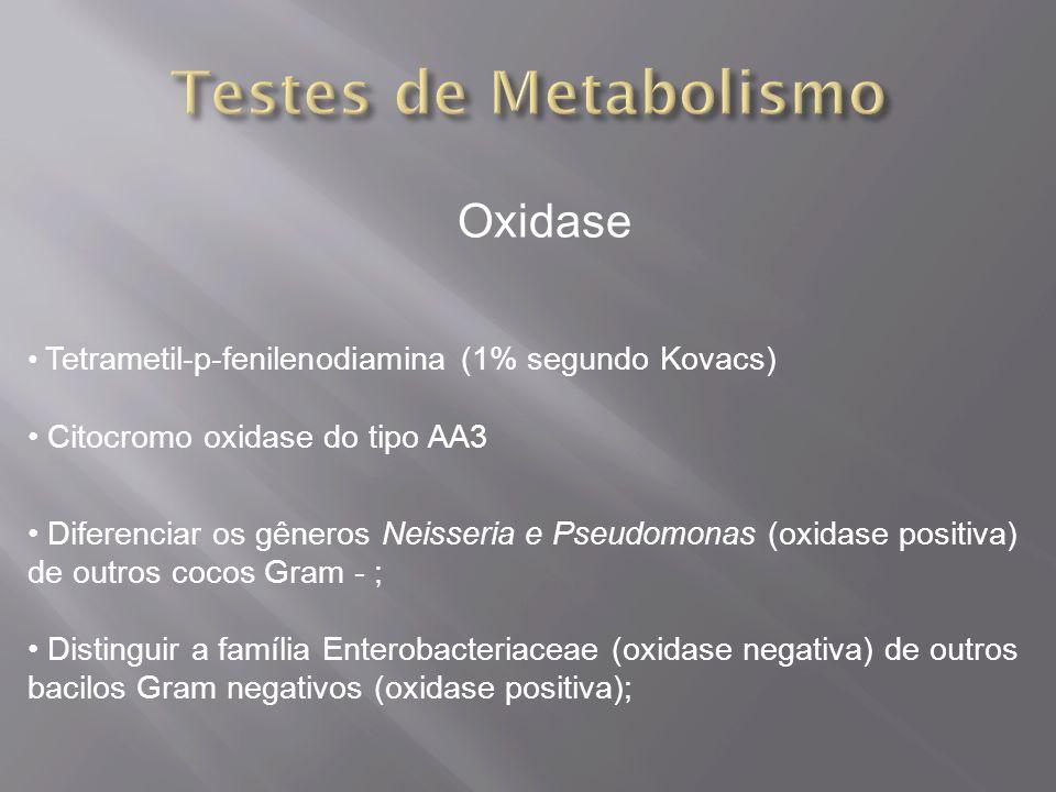Oxidase Tetrametil-p-fenilenodiamina (1% segundo Kovacs) Citocromo oxidase do tipo AA3 Diferenciar os gêneros Neisseria e Pseudomonas (oxidase positiva) de outros cocos Gram - ; Distinguir a família Enterobacteriaceae (oxidase negativa) de outros bacilos Gram negativos (oxidase positiva);