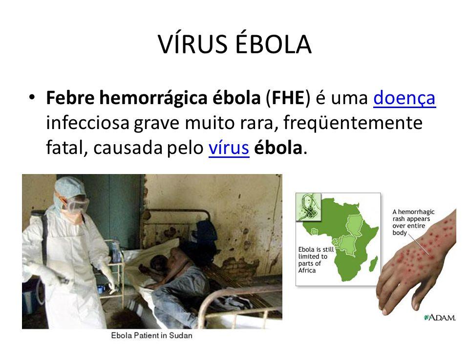 VÍRUS ÉBOLA Febre hemorrágica ébola (FHE) é uma doença infecciosa grave muito rara, freqüentemente fatal, causada pelo vírus ébola.doençavírus