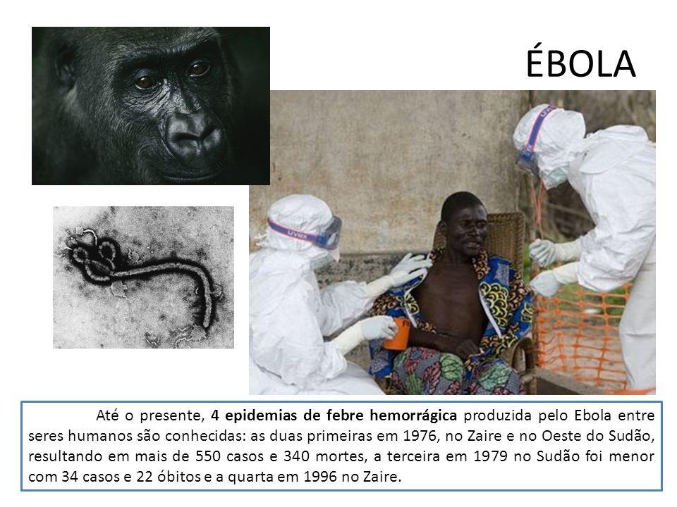 ÉBOLA Até o presente, 4 epidemias de febre hemorrágica produzida pelo Ebola entre seres humanos são conhecidas: as duas primeiras em 1976, no Zaire e