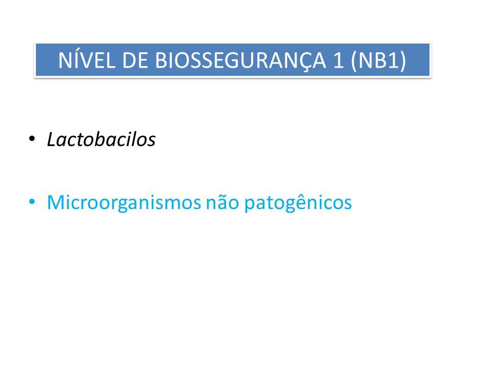 Lactobacilos Microorganismos não patogênicos NÍVEL DE BIOSSEGURANÇA 1 (NB1)