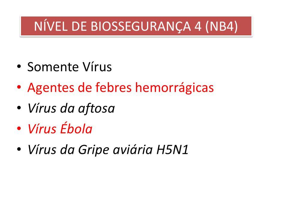 Somente Vírus Agentes de febres hemorrágicas Vírus da aftosa Vírus Ébola Vírus da Gripe aviária H5N1 NÍVEL DE BIOSSEGURANÇA 4 (NB4)