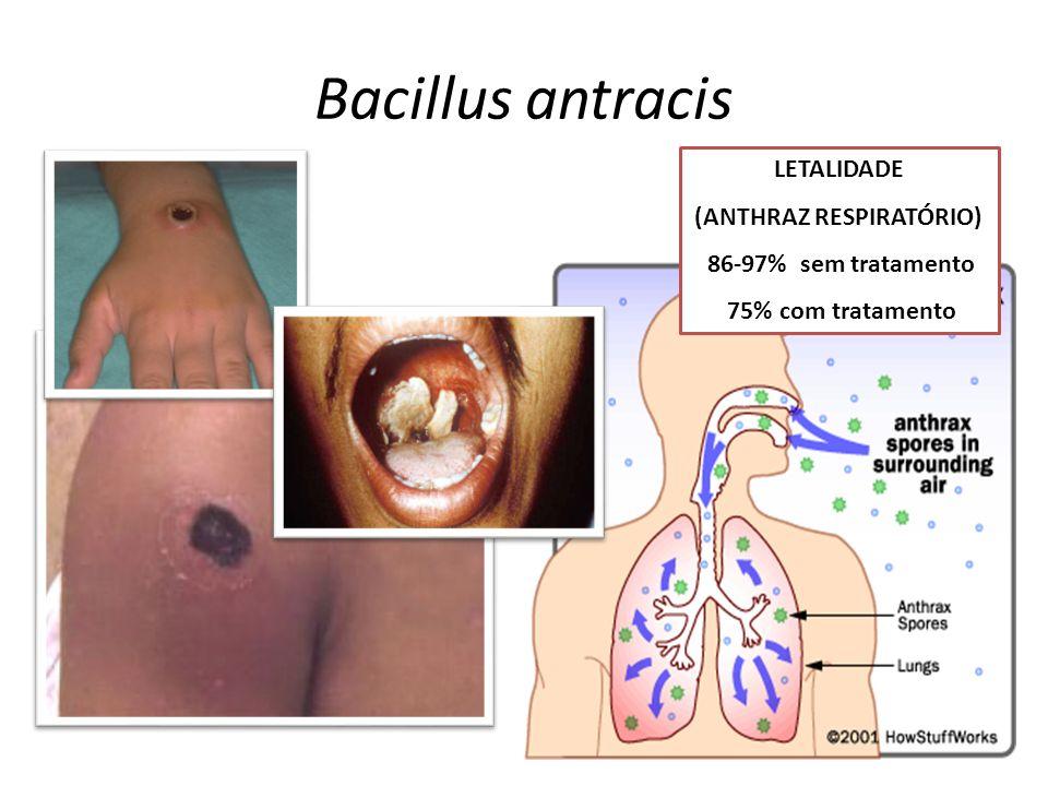 Bacillus antracis LETALIDADE (ANTHRAZ RESPIRATÓRIO) 86-97% sem tratamento 75% com tratamento