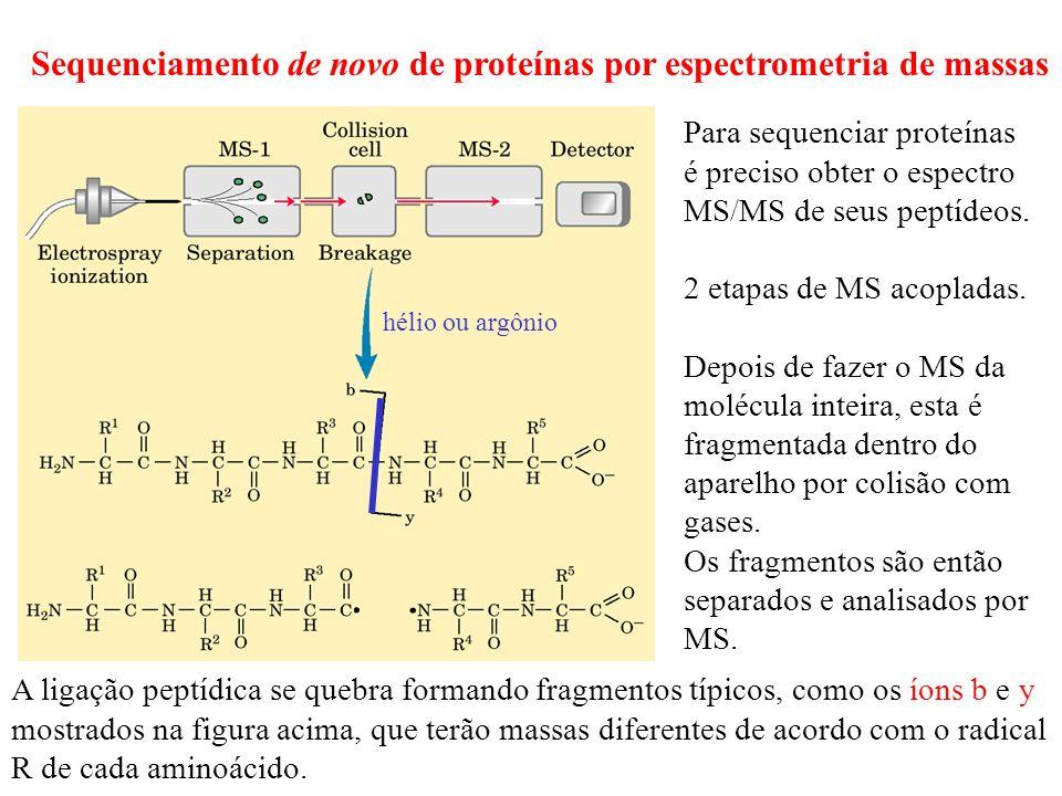 Sequenciamento de novo de proteínas por espectrometria de massas Para sequenciar proteínas é preciso obter o espectro MS/MS de seus peptídeos. 2 etapa