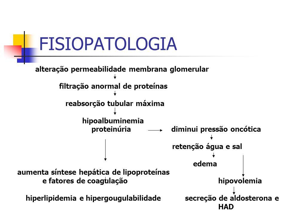 FISIOPATOLOGIA alteração permeabilidade membrana glomerular filtração anormal de proteínas reabsorção tubular máxima hipoalbuminemia proteinúria dimin