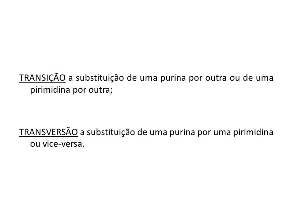 TRANSIÇÃO a substituição de uma purina por outra ou de uma pirimidina por outra; TRANSVERSÃO a substituição de uma purina por uma pirimidina ou vice-v