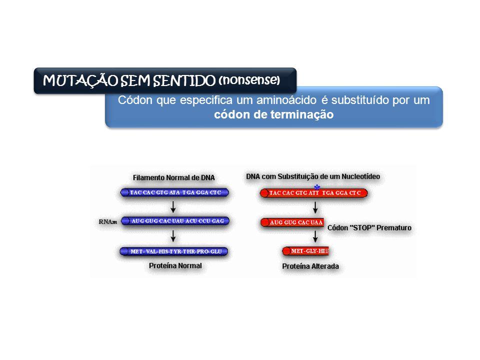 MUTAÇÃO SEM SENTIDO (nonsense) Códon que especifica um aminoácido é substituído por um códon de terminação