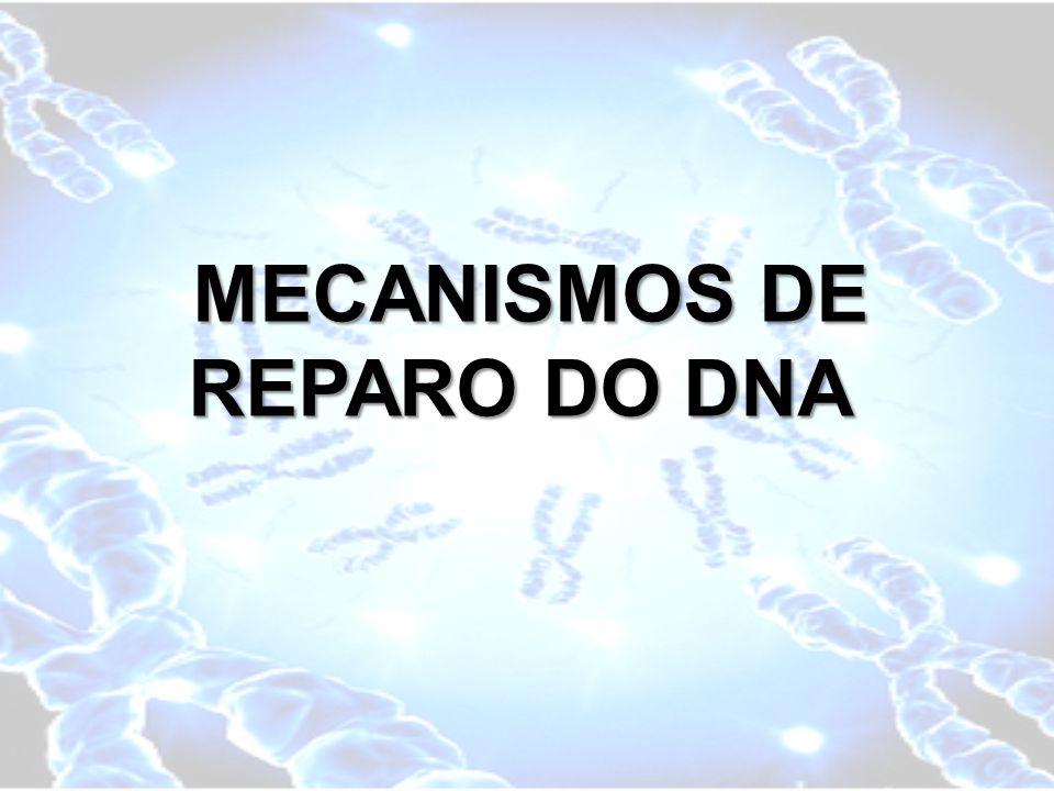 MECANISMOS DE REPARO DO DNA MECANISMOS DE REPARO DO DNA