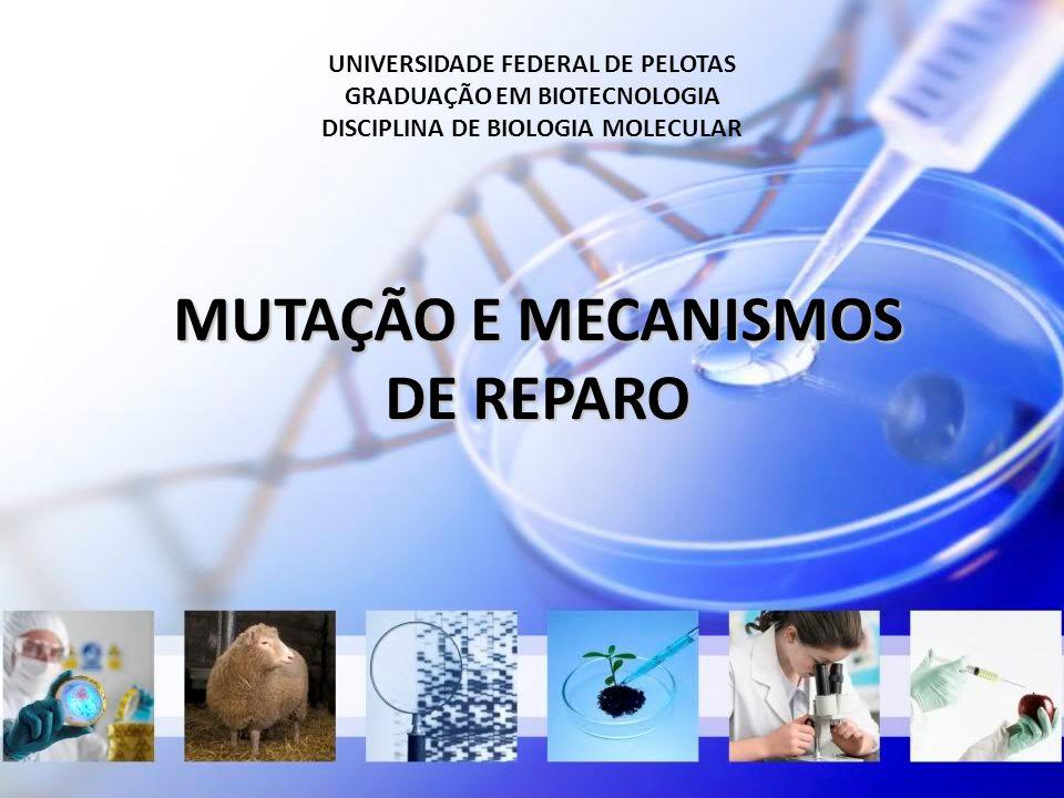 UNIVERSIDADE FEDERAL DE PELOTAS GRADUAÇÃO EM BIOTECNOLOGIA DISCIPLINA DE BIOLOGIA MOLECULAR MUTAÇÃO E MECANISMOS DE REPARO