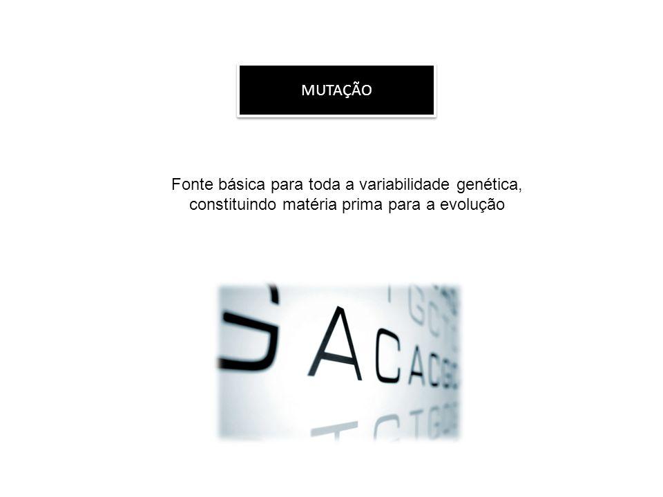MUTAÇÕES NO HOMEM HbA- ÁCIDO GLUTÂMICO HbS- VALINA ANEMIA FALCIFORME AT por TA