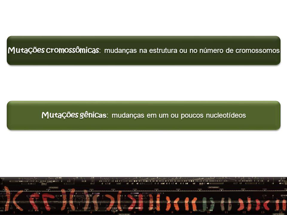 QUANTO A ALTERAÇÃO CAUSADA NO GENE Mutação pontual (um nucleotídio) Mutação sinônima Mutação não sinônima Mutação sem sentido (nosense) Mutação por deslocamento da fase de leitura Mutação por Inserção Mutação por Deleção MUTAÇÕES GÊNICAS