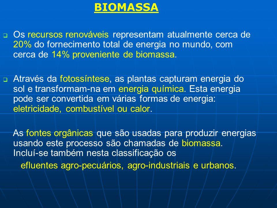 BIOMASSA Os recursos renováveis representam atualmente cerca de 20% do fornecimento total de energia no mundo, com cerca de 14% proveniente de biomass