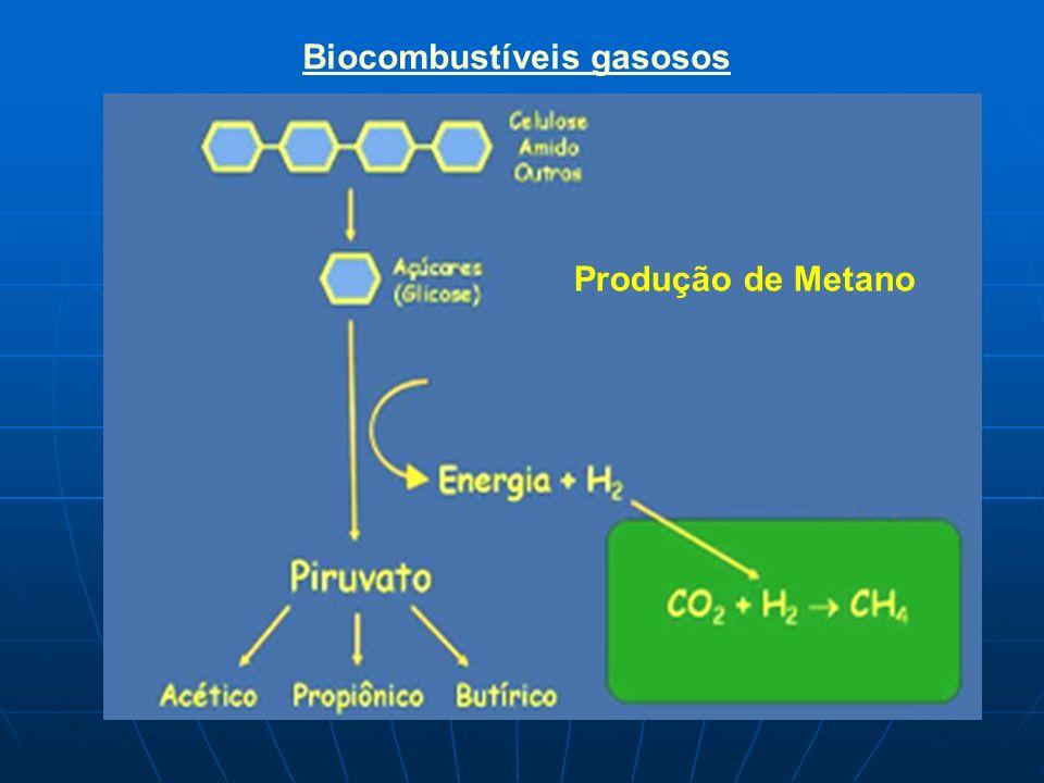 Produção de Metano Biocombustíveis gasosos