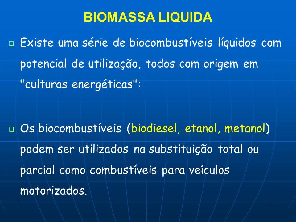 BIOMASSA LIQUIDA Existe uma série de biocombustíveis líquidos com potencial de utilização, todos com origem em