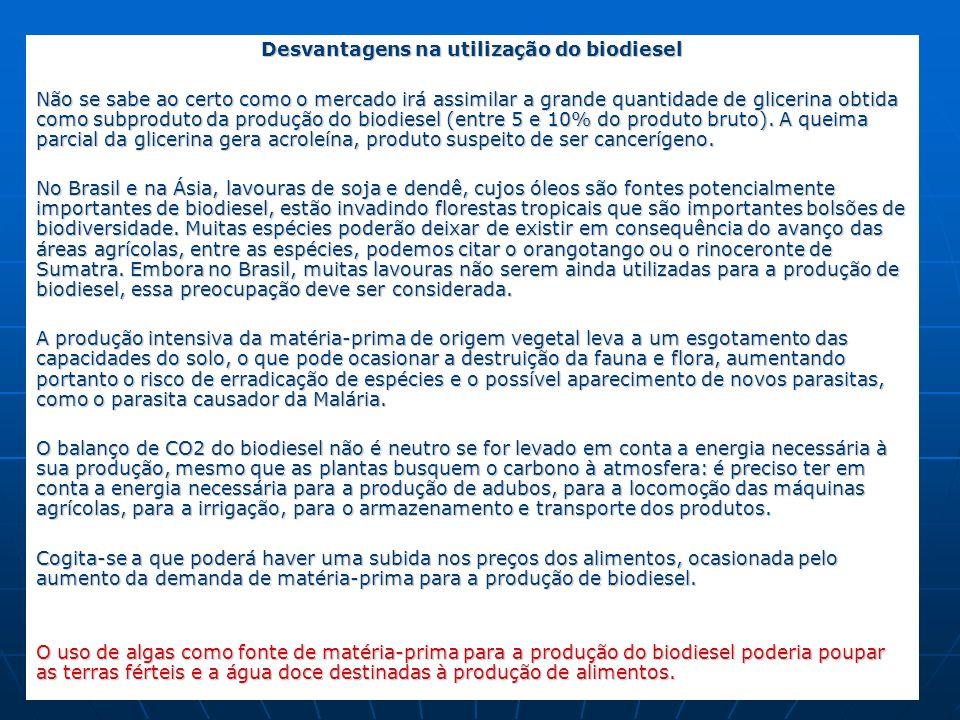 Desvantagens na utilização do biodiesel Não se sabe ao certo como o mercado irá assimilar a grande quantidade de glicerina obtida como subproduto da p
