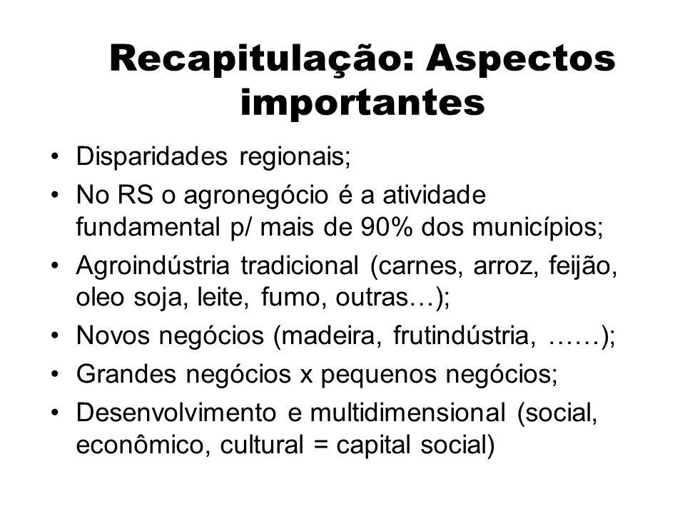 Recapitulação: Aspectos importantes Disparidades regionais; No RS o agronegócio é a atividade fundamental p/ mais de 90% dos municípios; Agroindústria