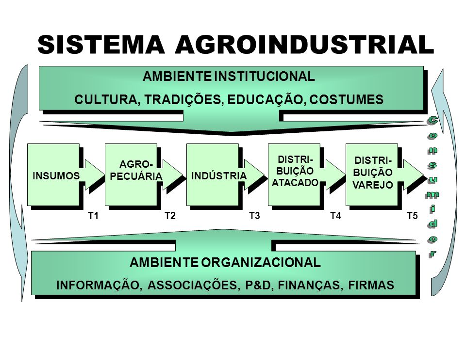 SISTEMA AGROINDUSTRIAL AMBIENTE INSTITUCIONAL CULTURA, TRADIÇÕES, EDUCAÇÃO, COSTUMES AMBIENTE ORGANIZACIONAL INFORMAÇÃO, ASSOCIAÇÕES, P&D, FINANÇAS, F
