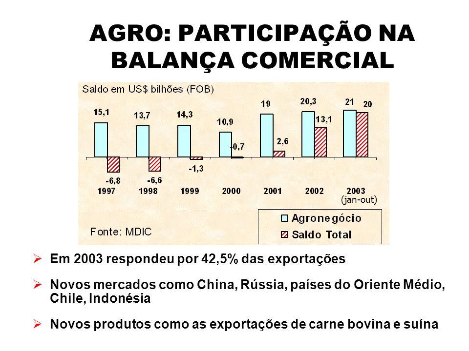 AGRO: PARTICIPAÇÃO NA BALANÇA COMERCIAL Em 2003 respondeu por 42,5% das exportações Novos mercados como China, Rússia, países do Oriente Médio, Chile,