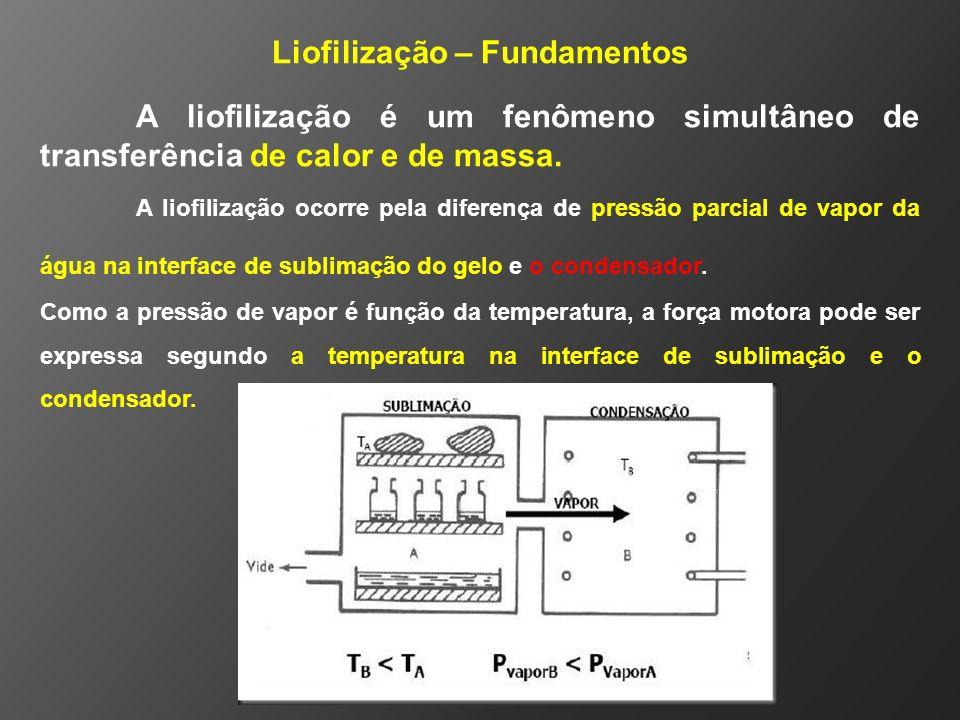 Liofilização – Fundamentos A liofilização é um fenômeno simultâneo de transferência de calor e de massa. A liofilização ocorre pela diferença de press