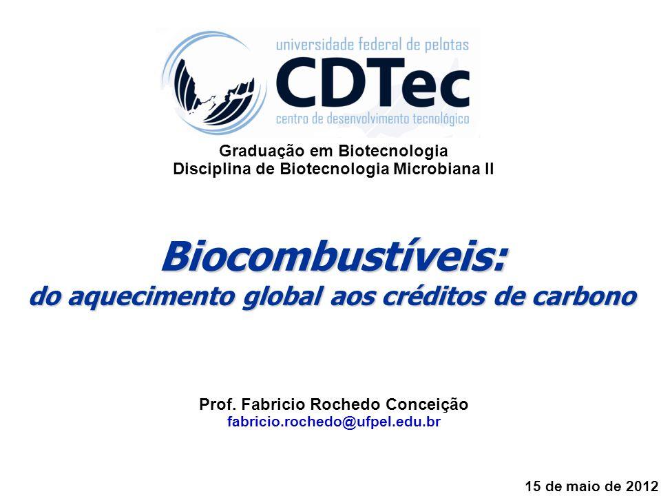 Biocombustíveis: do aquecimento global aos créditos de carbono Prof. Fabricio Rochedo Conceição fabricio.rochedo@ufpel.edu.br 15 de maio de 2012 Gradu