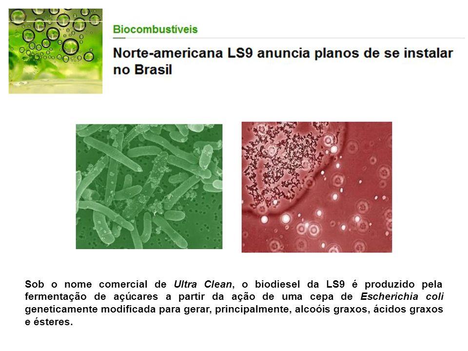 Sob o nome comercial de Ultra Clean, o biodiesel da LS9 é produzido pela fermentação de açúcares a partir da ação de uma cepa de Escherichia coli gene