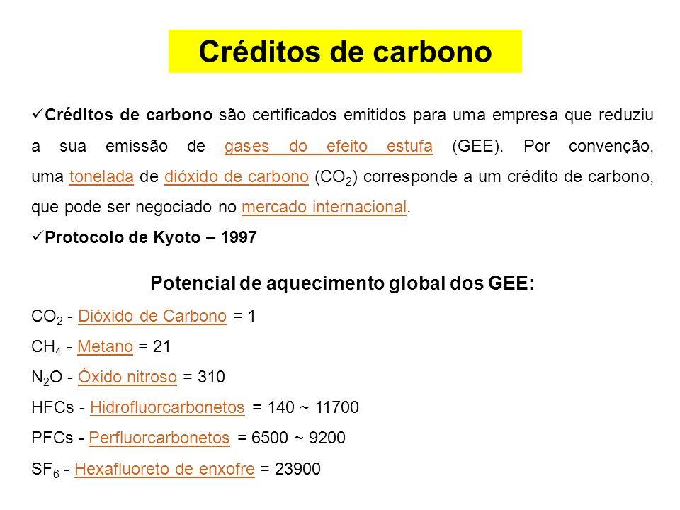 Créditos de carbono são certificados emitidos para uma empresa que reduziu a sua emissão de gases do efeito estufa (GEE). Por convenção, uma tonelada