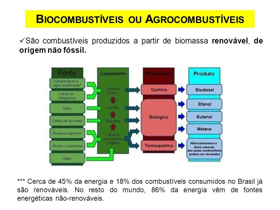 São combustíveis produzidos a partir de biomassa renovável, de origem não fóssil. B IOCOMBUSTÍVEIS OU A GROCOMBUSTÍVEIS *** Cerca de 45% da energia e