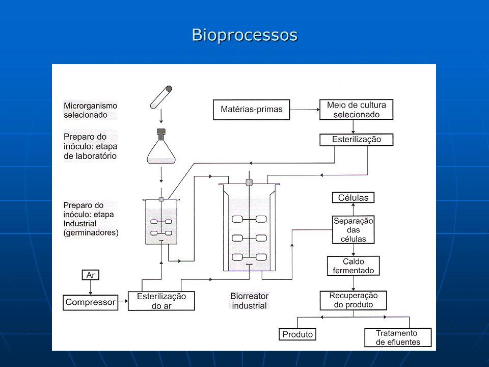 Contagem total de células: E sta metodologia envolve a contagem direta das células em um microscópio, utilizando-se câmaras de contagem.