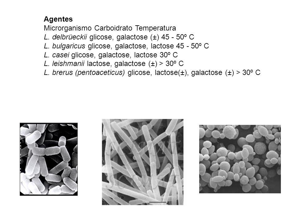 Agentes Microrganismo Carboidrato Temperatura L. delbrüeckii glicose, galactose (±) 45 - 50º C L. bulgaricus glicose, galactose, lactose 45 - 50º C L.