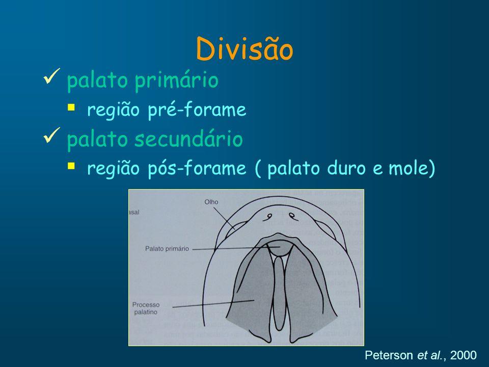 Divisão palato primário região pré-forame palato secundário região pós-forame ( palato duro e mole) Peterson et al., 2000