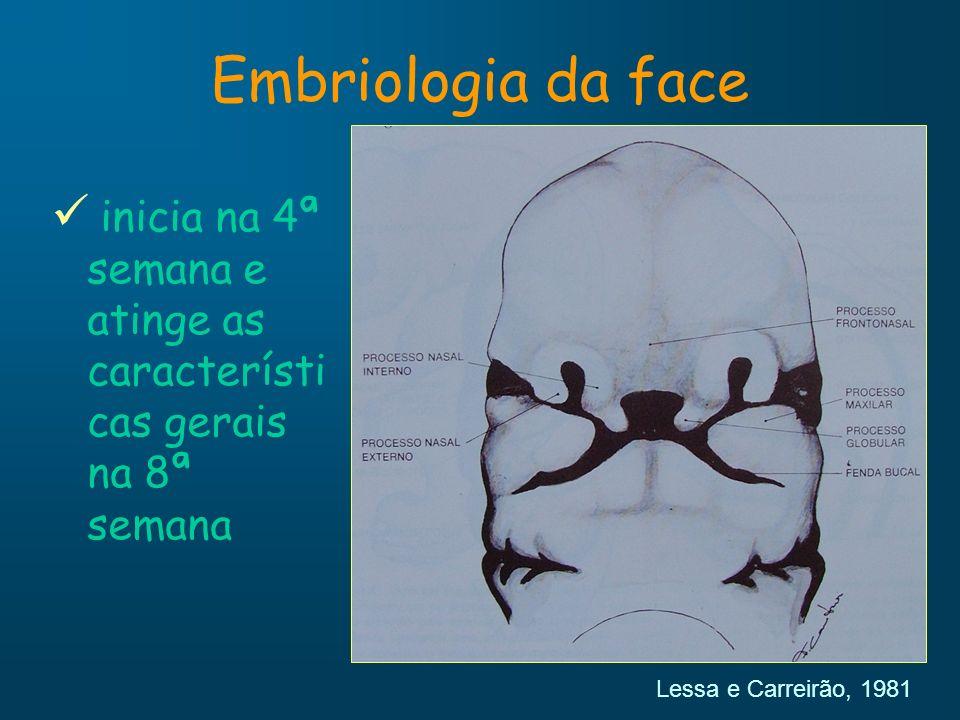 5ª semana Protuberância nasal lateral formação da asa do nariz protuberância nasal medial porção média do nariz, do lábio superior e da maxila palato primário Embriologia da face Peterson et al., 2000