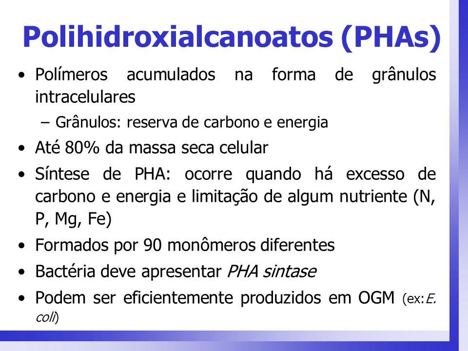 Polihidroxialcanoatos (PHAs) Polímeros acumulados na forma de grânulos intracelulares –Grânulos: reserva de carbono e energia Até 80% da massa seca ce