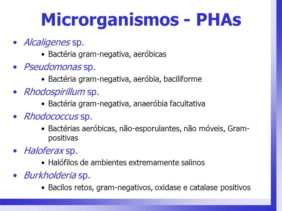 Microrganismos - PHAs Alcaligenes sp. Bactéria gram-negativa, aeróbicas Pseudomonas sp. Bactéria gram-negativa, aeróbia, baciliforme Rhodospirillum sp