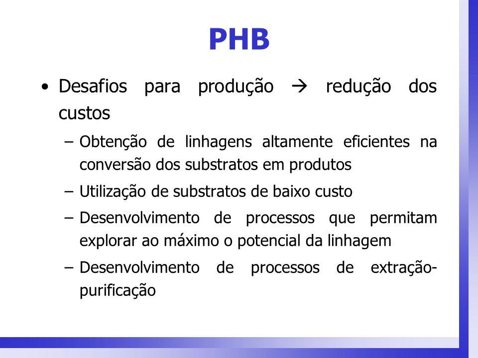 PHB Desafios para produção redução dos custos –Obtenção de linhagens altamente eficientes na conversão dos substratos em produtos –Utilização de subst