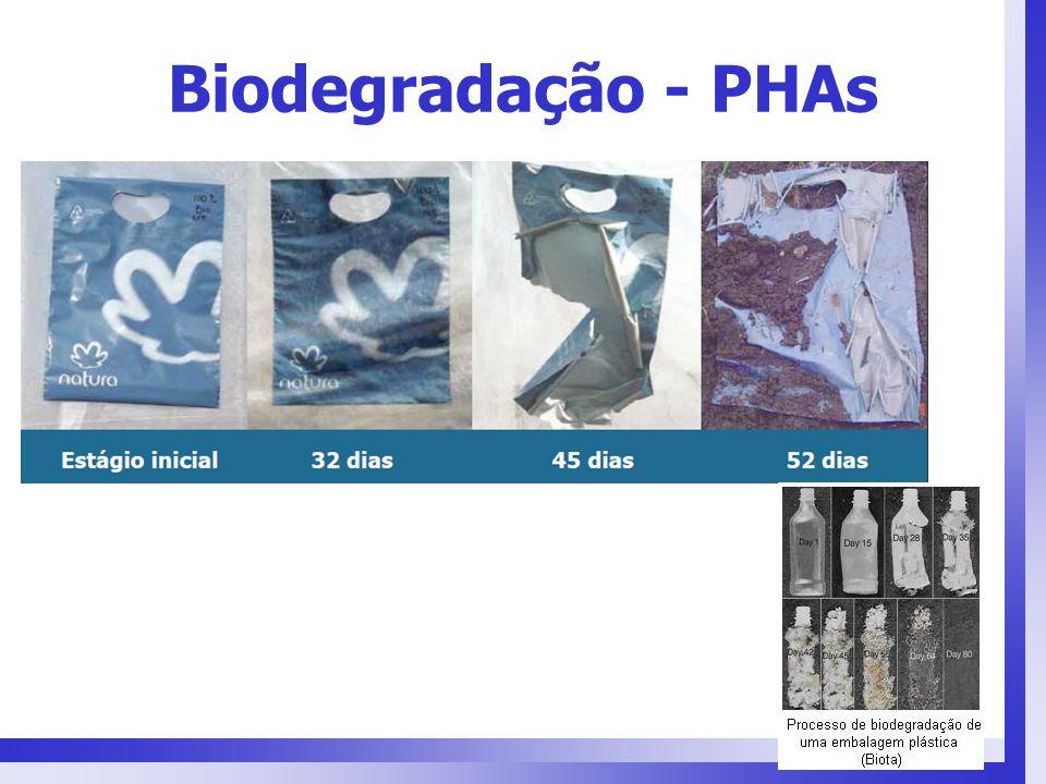 Biodegradação - PHAs