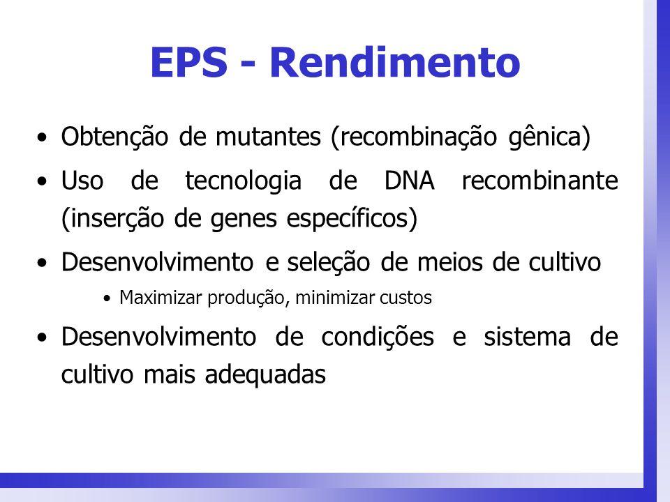 EPS - Rendimento Obtenção de mutantes (recombinação gênica) Uso de tecnologia de DNA recombinante (inserção de genes específicos) Desenvolvimento e se
