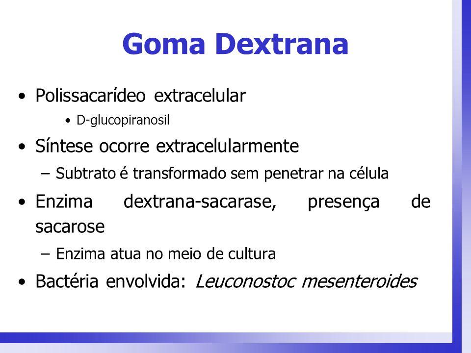 Goma Dextrana Polissacarídeo extracelular D-glucopiranosil Síntese ocorre extracelularmente –Subtrato é transformado sem penetrar na célula Enzima dex