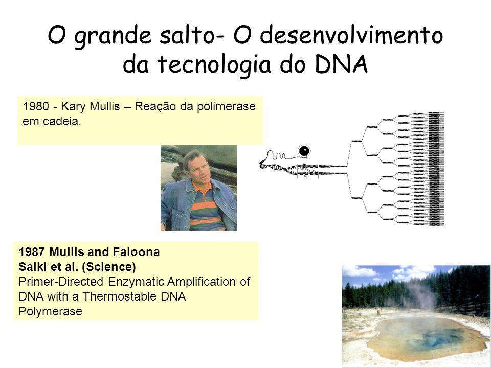 O grande salto- O desenvolvimento da tecnologia do DNA 1980 - Kary Mullis – Reação da polimerase em cadeia. 1987 Mullis and Faloona Saiki et al. (Scie