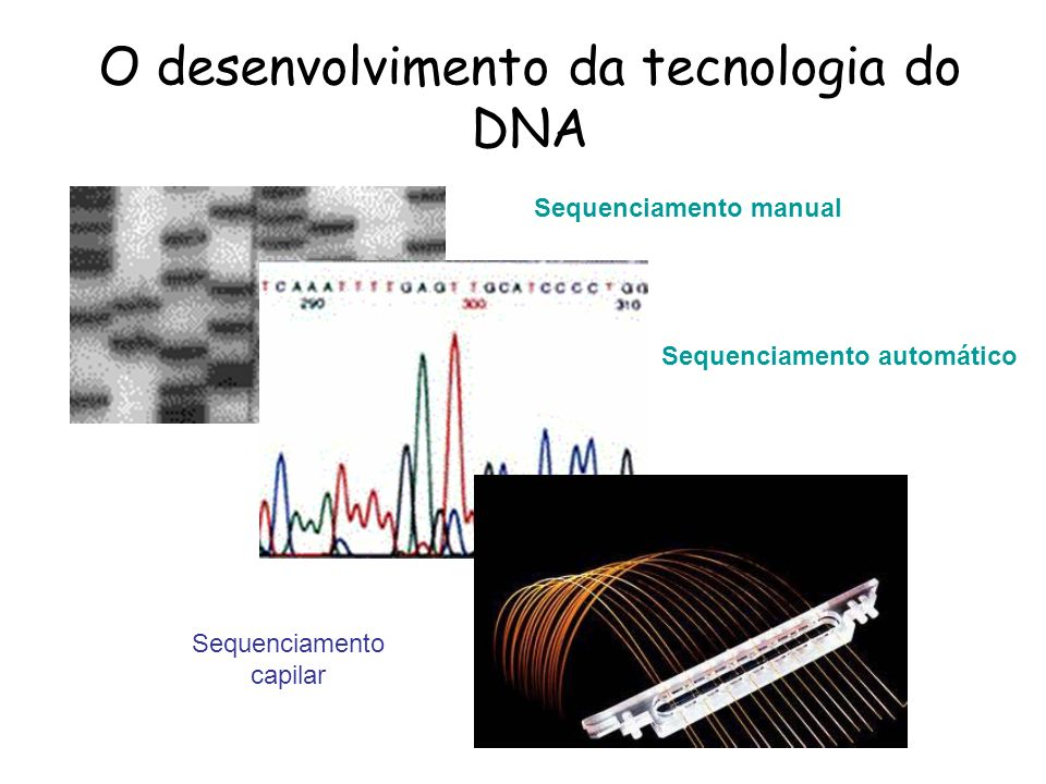 Sequenciamento manual Sequenciamento automático Sequenciamento capilar O desenvolvimento da tecnologia do DNA