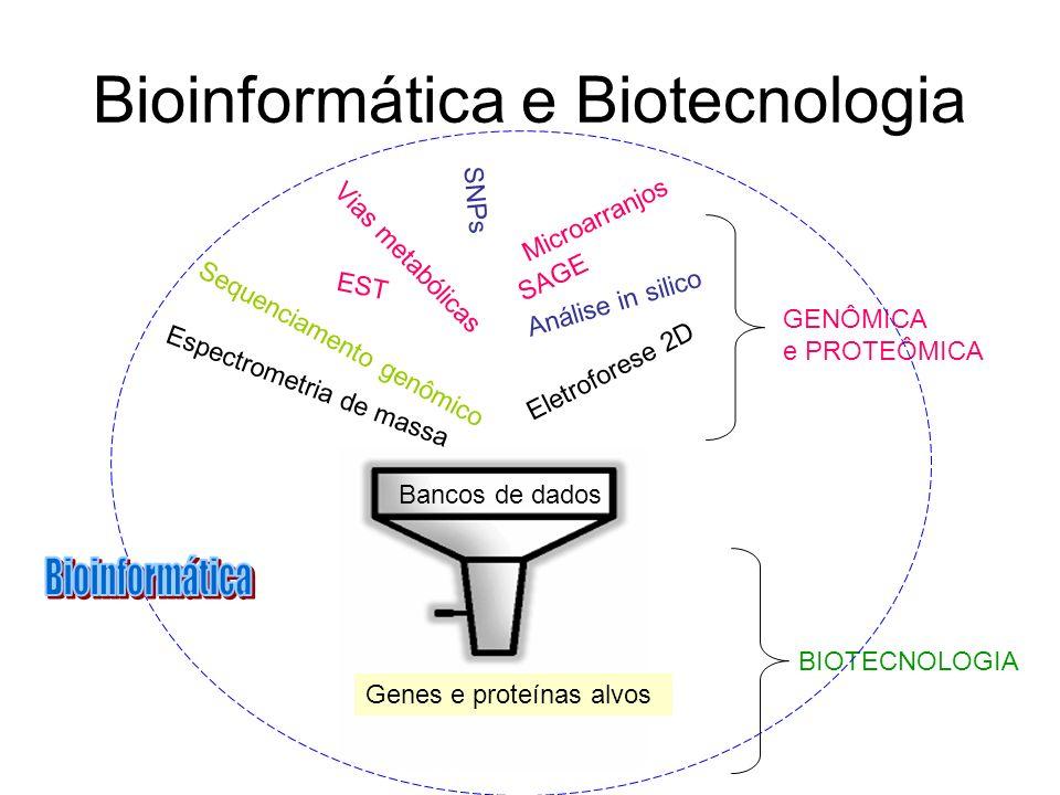 Bioinformática e Biotecnologia EST Vias metabólicas SAGE Análise in silico SNPs GENÔMICA e PROTEÔMICA BIOTECNOLOGIA Microarranjos Sequenciamento genôm