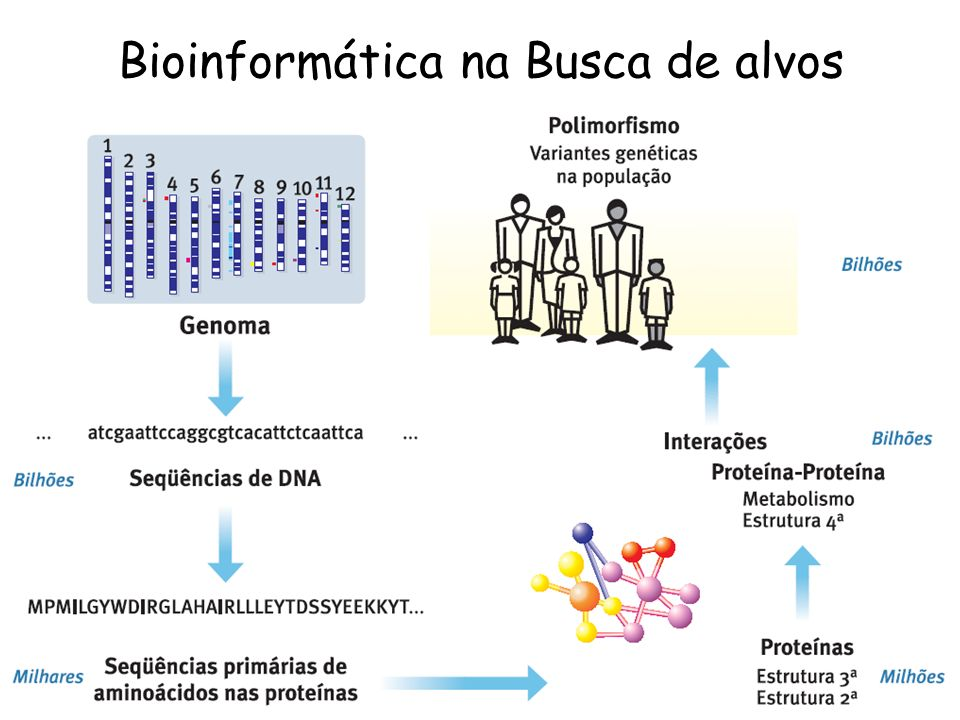 Bioinformática na Busca de alvos