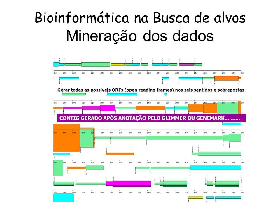 Bioinformática na Busca de alvos Mineração dos dados