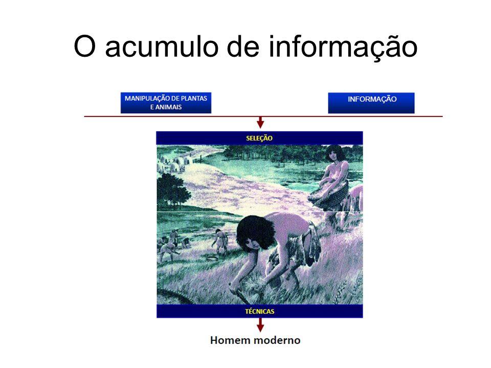 O acumulo de informação