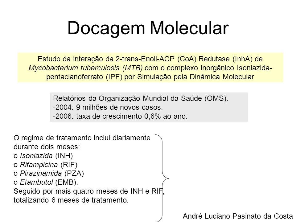 Docagem Molecular Estudo da interação da 2-trans-Enoil-ACP (CoA) Redutase (InhA) de Mycobacterium tuberculosis (MTB) com o complexo inorgânico Isoniaz