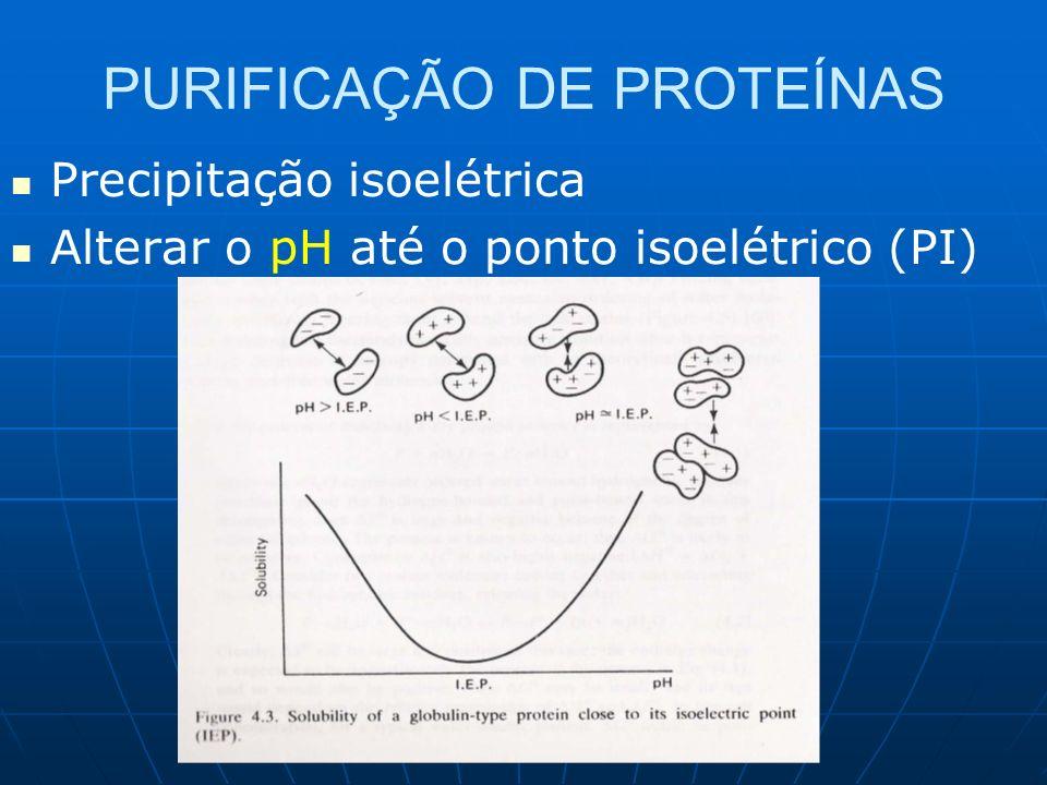 PURIFICAÇÃO DE PROTEÍNAS Precipitação isoelétrica Alterar o pH até o ponto isoelétrico (PI)