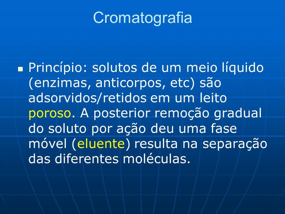 Cromatografia Princípio: solutos de um meio líquido (enzimas, anticorpos, etc) são adsorvidos/retidos em um leito poroso. A posterior remoção gradual