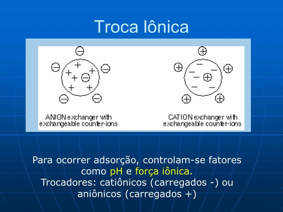 Troca Iônica Para ocorrer adsorção, controlam-se fatores como pH e força iônica. Trocadores: catiônicos (carregados -) ou aniônicos (carregados +)